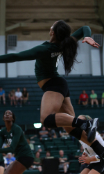 Ebony volleyball